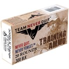 TRAINING AMMO 300 AAC BLACKOUT 147GR FMJ