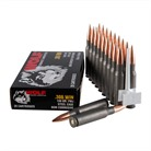 PERFORMANCE 308 WINCHESTER AMMO