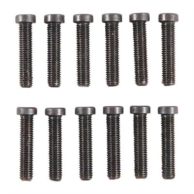 "Long 6-48 & 8-40 Screws - 8-40 X 3/4"" Torx, Fillister Head Refill Pak"