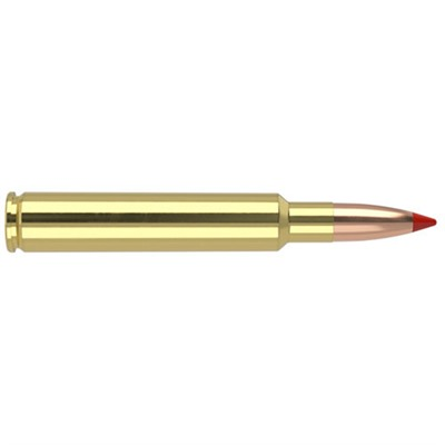 Nosler Ballistic Tip 280 Ackley Improved Ammo - 280 Ackley Improved 140gr Ballistic Tip 20/Box