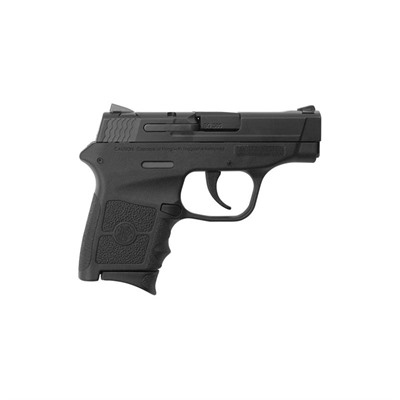 Smith & Wesson Bodyguard 380 2.75in 380 Auto Matte Polymer Drift Adj 6+1rd
