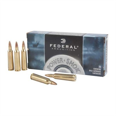 Power-Shok Soft Point Ammo