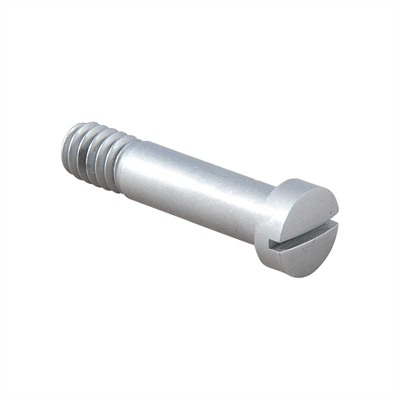 Barrel Mounting Screw, Ss