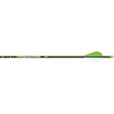 Hunter Xt Arrows W/2