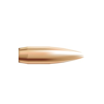 Nosler Custom Competition Bullets - Custom Competition Bullets .22 Cal (.224) 69gr 250/Box