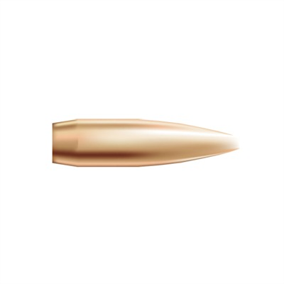 "Nosler Custom Competition Bullets 22 Caliber (0.224"") 77gr Hollow Point Boat Tail 250/Box Online Discount"