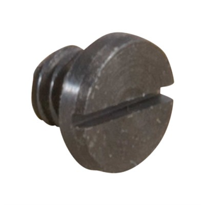Cartridge Stop Spring Screw