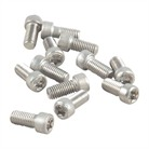 6-48 .280 SS TORX SCREWS, PK 12