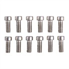 6-48 .350 SS TORX SCREWS, PK 12