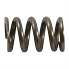 102020000 EXTRACTOR SPRING